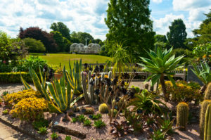 CANCELLED - Guided Tour: Heritage and History of Birmingham Botanical Gardens