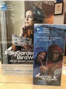 Take part in the RSPB Big Garden Bird Watch 2020 at Birmingham Botanical Gardens