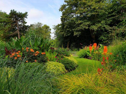 Gardener's Blog - May 2020